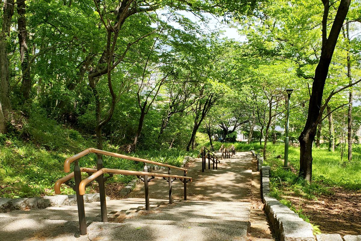 近隣の緑地